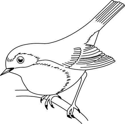Les 11 meilleures images du tableau dessin d 39 oiseaux sur - Dessin d oiseau a imprimer ...