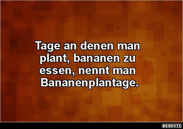 Tage An Denen Man Plant Bananen Zu Essen Nennt Man Lustige