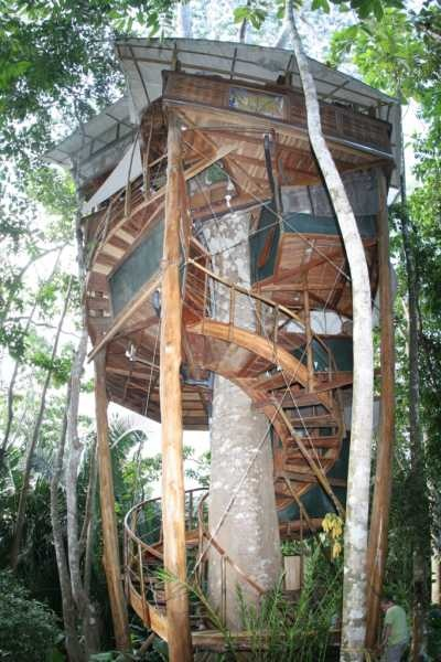 Tree houses and treehouse, Costa Rica. Lapas Nest Treehouse Luxury Treehouse rental in rainforest. Treehouse adventures in Central America, soon to be featured on Survivor in Costa Rica, Serbian new tv series,youtube video.