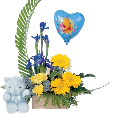 19 best new baby flowers and gifts in miami images on pinterest baby arrangement flowers onlinebaby flowergift negle Gallery