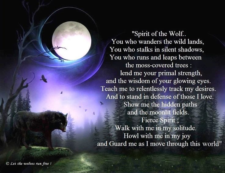 Wolf Quotes About Strength: 1000+ Wolf Pack Quotes On Pinterest