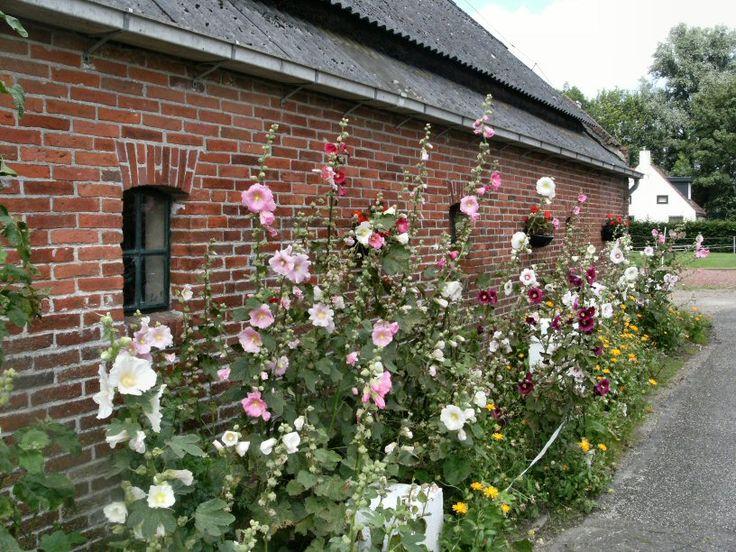 25 beste idee n over boerderij tuin op pinterest for Tuinontwerp boek