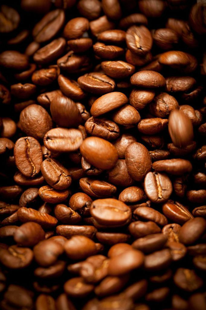 Beautiful beans! Get some #organic #coffee here: http://www.groundworkcoffee.com/collections/frontpage