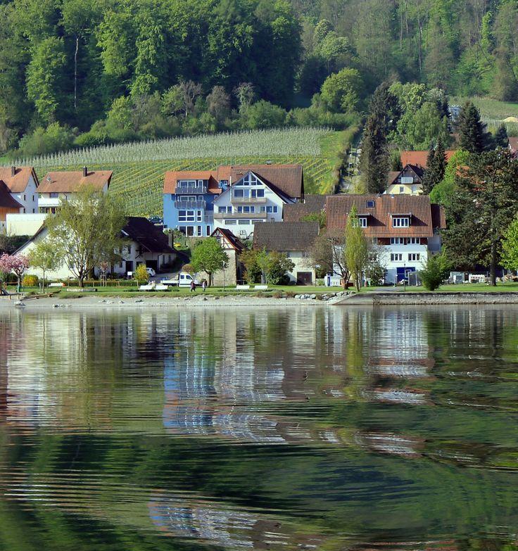 Unser blaues Ferienhaus mit vier Ferienwohnungen in Bodman