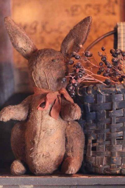 old looking rabbit