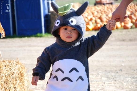 Halloween :): Cosplay, Sew, Stuff, Halloween Costumes, Totoro Costume, Baby Totoro, Costume Tutorial, Kid