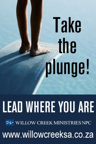 the plunge ad