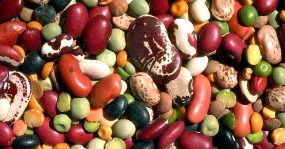 Realtà o Fantasia ?!: Ammollo di Legumi e Cereali: a cosa serve e come farlo