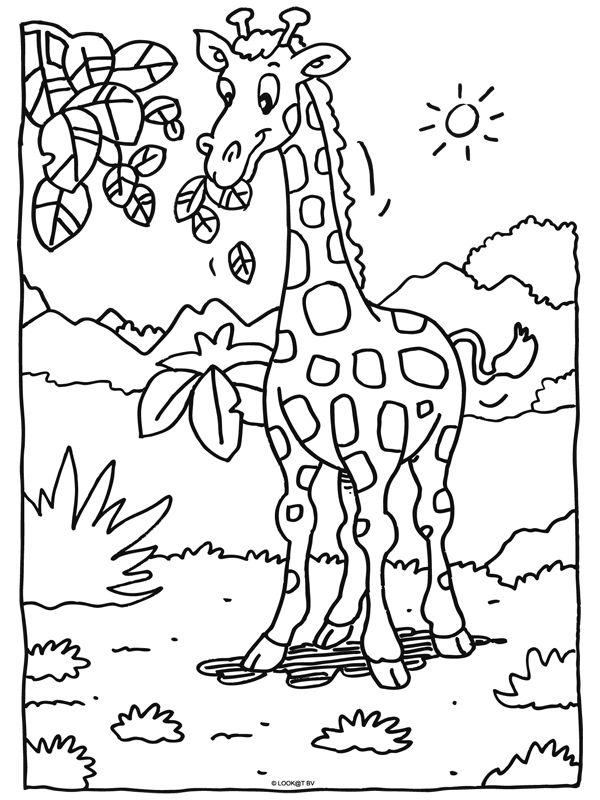 Kleurplaat Giraffe Coloring Pages Animal Coloring Pages