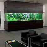 Cool-aquarium-wall-decor