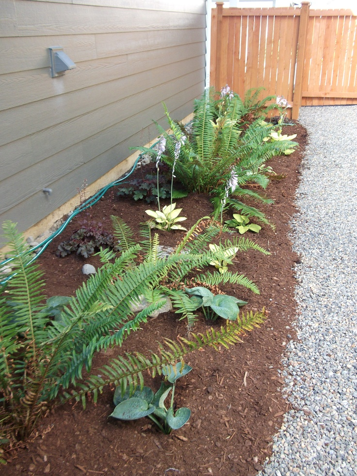 Ideas for a narrow side yard | For the Yard | Pinterest on Narrow Side Yard Landscaping id=11391