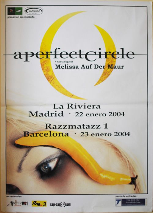 A PERFECT CIRCLE, Tour 2004