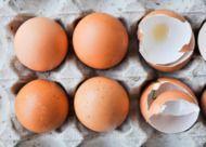Kun je eieren invriezen? - Sante.nl