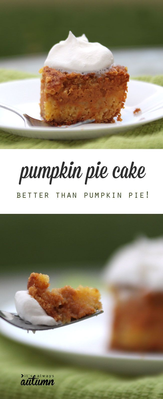 This Pumpkin Pie Cake recipe is so delicious! It's easy-to-make and ...