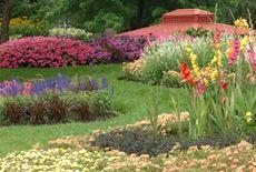 Le jardin des annuelles au Centre de la Nature de Laval
