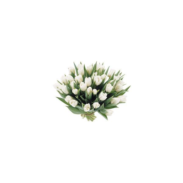 Bouquet di tulipani bianchi ❤ liked on Polyvore featuring home, home decor, floral decor, flowers, fillers, plants, flower home decor, flower bouquets and flower stem