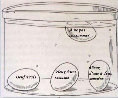 Pouvez-vous toujours consommer ces œufs ? Découvrez comment le savoir