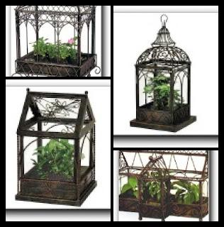 Diy Terrarium Terrarium And Greenhouses On Pinterest