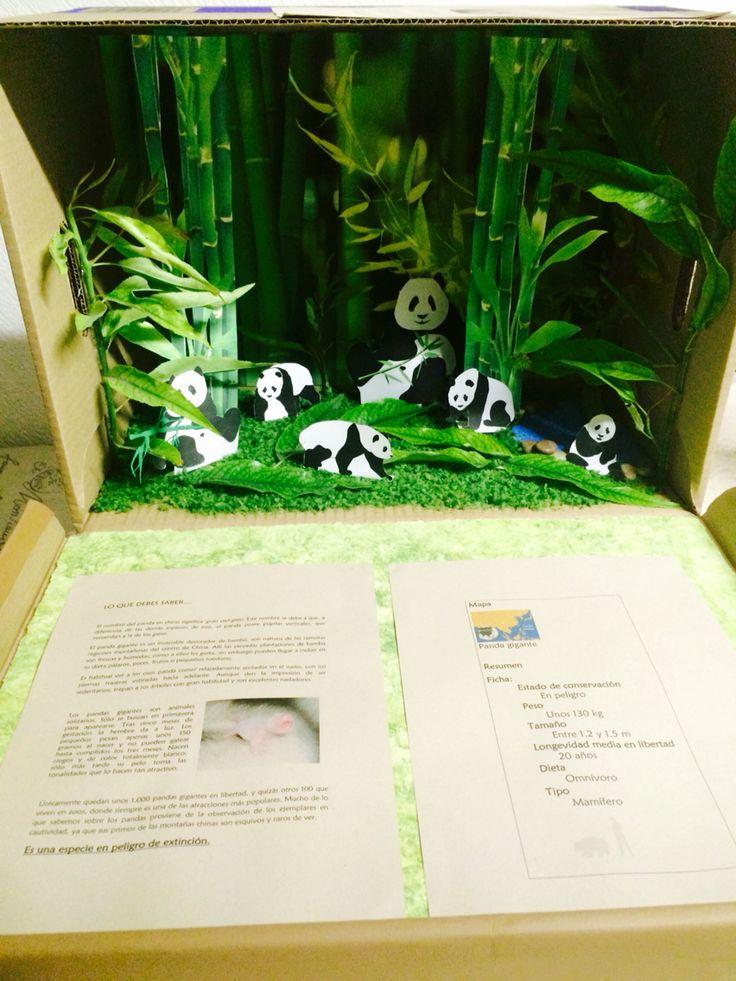 Panda U0026 39 S Habitat Diorama
