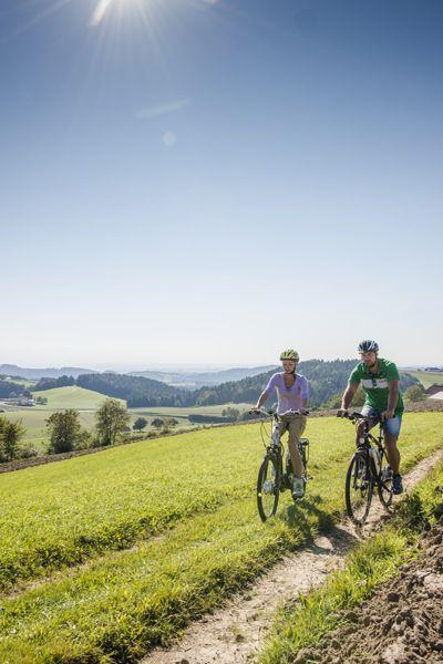 Beim #Radfahren den #Weitblick im #Mühlviertel genießen. Weitere Informationen zu #Radurlaub im Mühlviertel in #Österreich unter www.muehlviertel.at/radfahren - ©Mühlviertel Marken GmbH/Erber