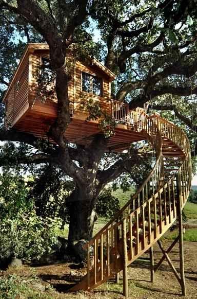Case sugli alberi made in Italy