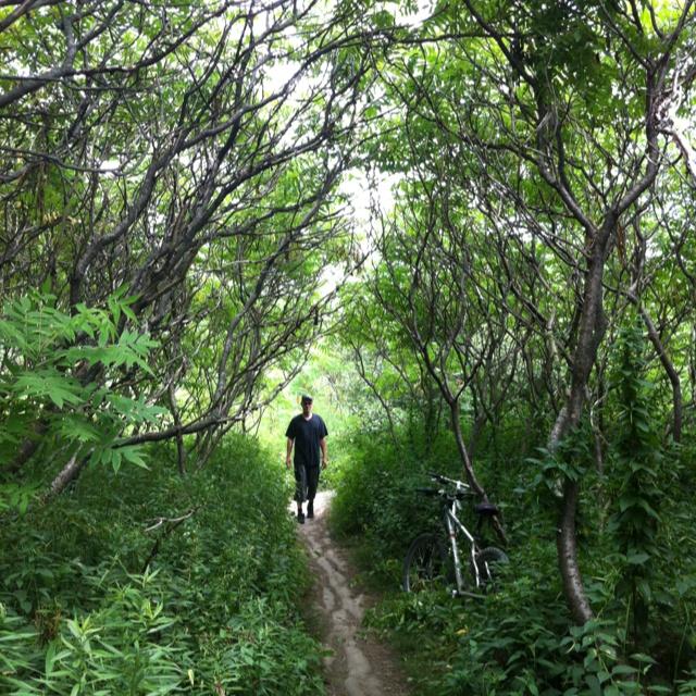 Man on a path