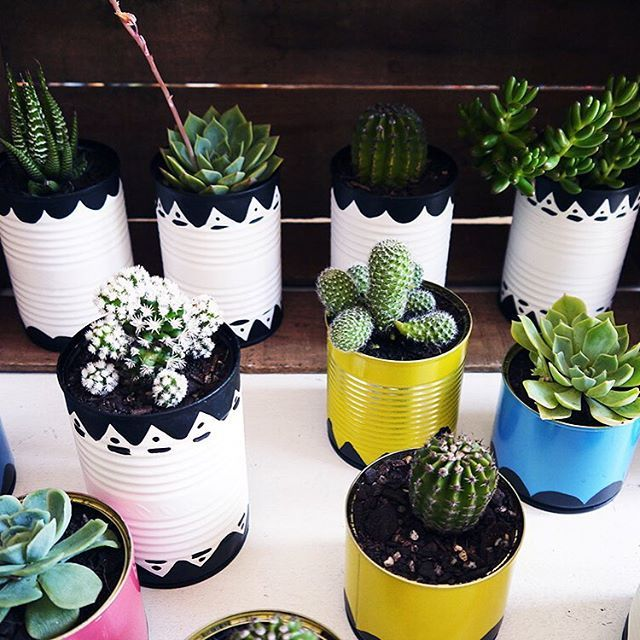 TA DAH! Hand painted tins with a Mexican Fiesta feel. Inspiration from the very creative @craftedsparrow. I'll be eating tinned veggies for at least another week!  #cacti #cactus #mexican #fiesta #party #partytheme  #succulents #tinpots #DIY #decorations #handpainted #make #craft #craftprojects #diygarden #thecolourcurator