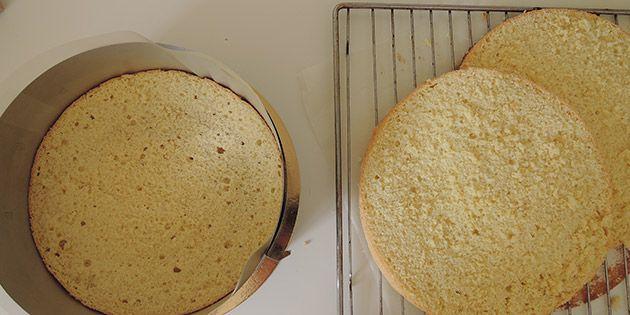 Lette og luftige lagkagebunde, der bages i springform. De er både nemme at lave og smager ti gange bedre end dem, man kan købe i supermarkedet.