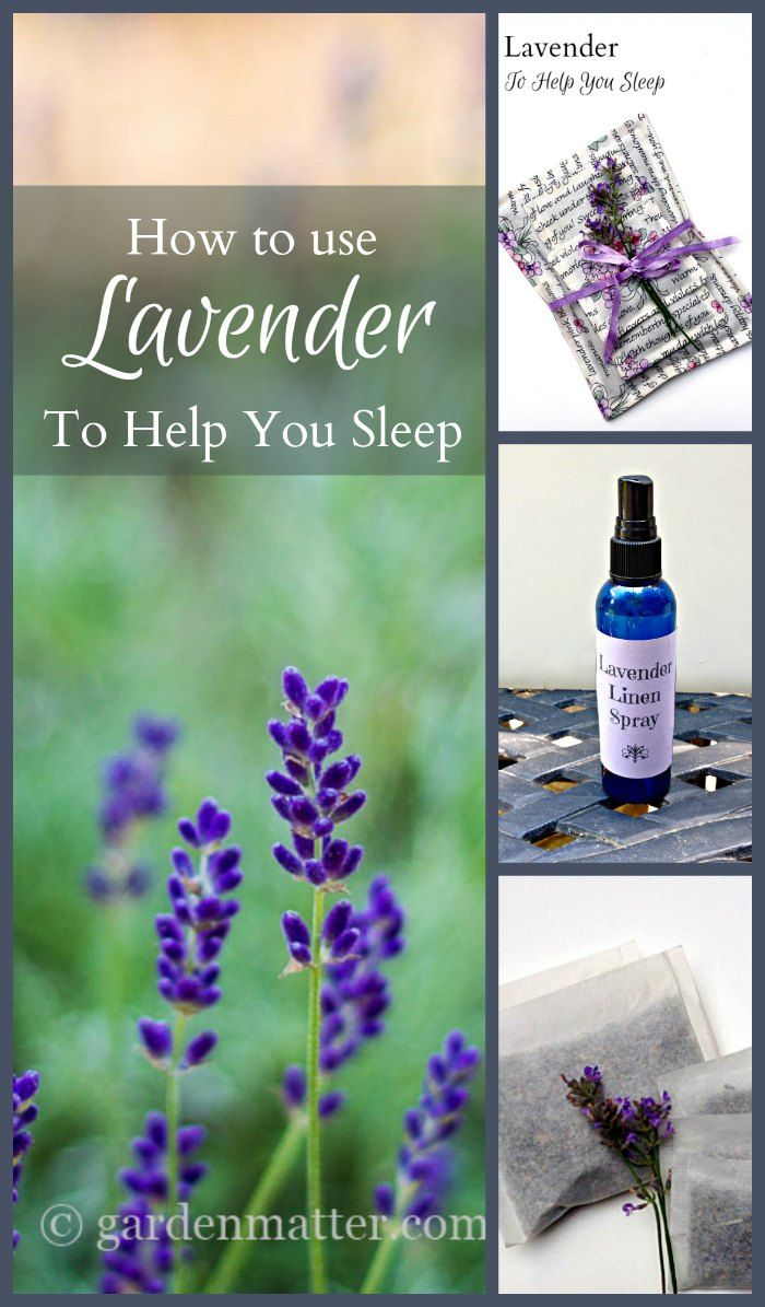 17 Best Images About Essential Oils On Pinterest Diffusers Eos And Essential Oil Diffuser