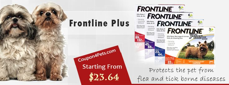 Frontline Plus Coupon Codes & Discount Offers Frontline Plus (COMBO) for Dogs Coupon4pets.com is the best source to find free online Frontline Plus coupons & discount codes. It helps you save money on your online purchases by using the following free online coupons and discount deals for Frontline Plus.  #PetCare   #Medication   #CheaperWay   #Coupon4Pets   #Frontline   #Petfoodcoupons   #Petfood   #Frontlineplus   #Dogsfood
