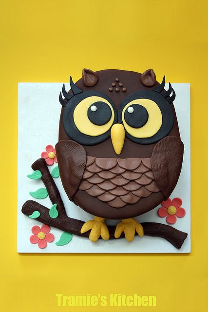 Owl cake by Tramie's Kitchen, via Flickr