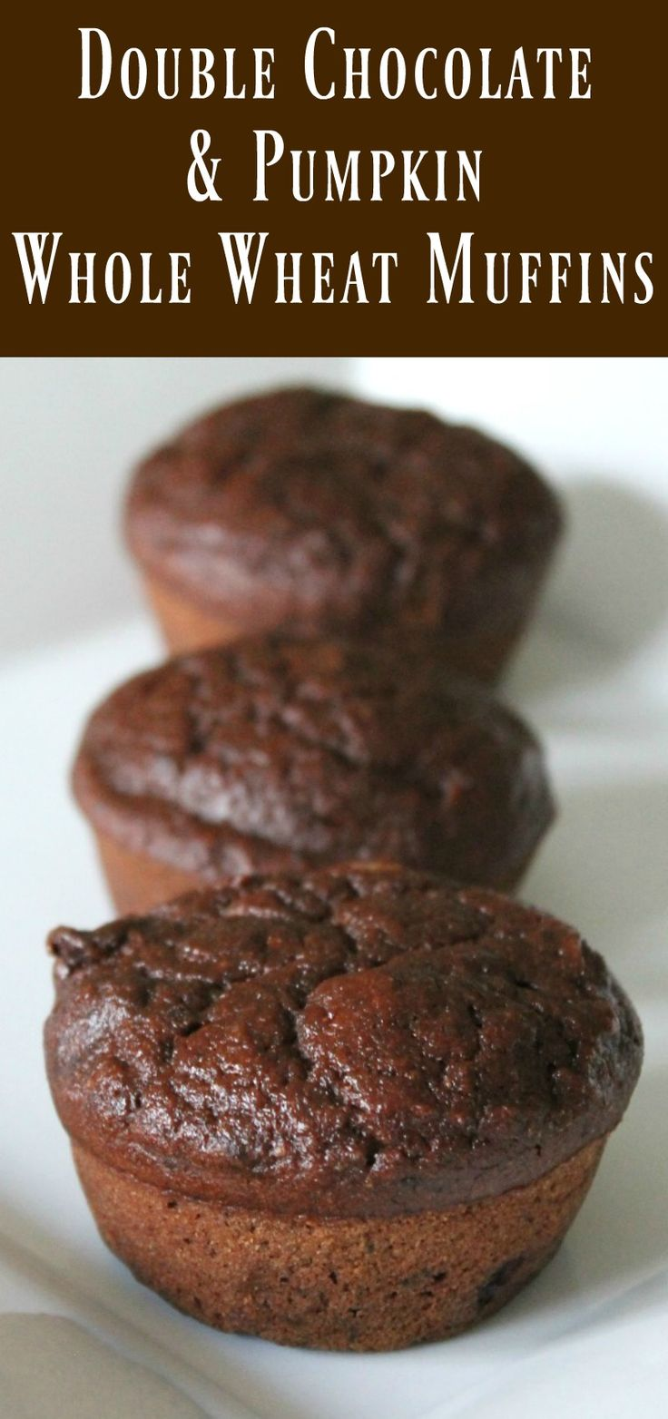 ... Chocolate Pumpkin Muffins. The most delicious chocolate muffin ever