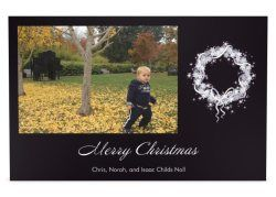 Our holiday card.