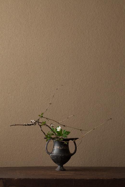 2012年5月7日(月) 深山で出会った遅い春です。 花=忍冬(ニンドウ)、二輪草(ニリンソウ) 器=ギリシア陶器クラテル(ギリシア時代)