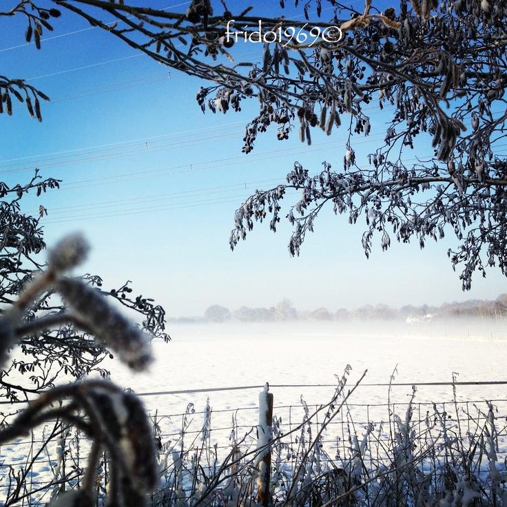 Dutch landscape in winter #thenetherlands #snow #winter