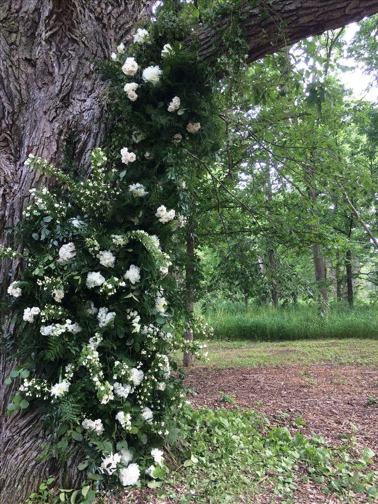 This tree was the perfect frame for my couple!!!   #weddings #wedding #backdrop #tree #organic #white #canada #ontario #floralart #weddingflowers #flowers #floraldesign #floralinstallation #barnwedding #rustic