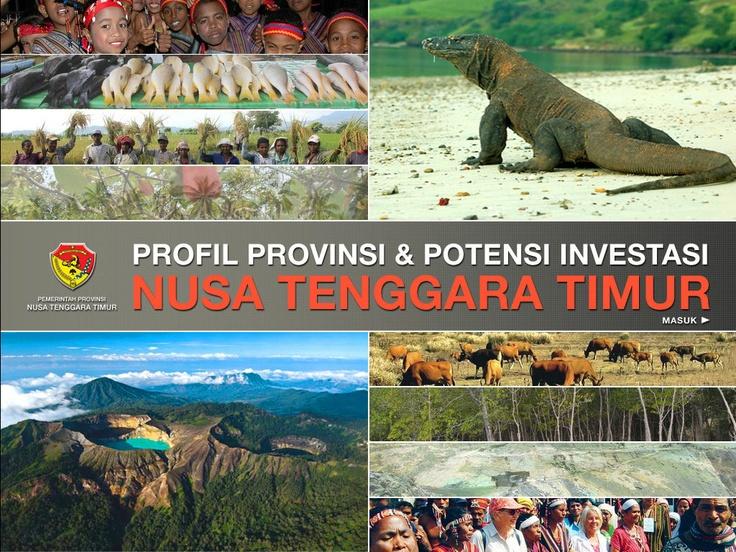 CD Profil Potensi Investasi Provinsi NTT (cover page)