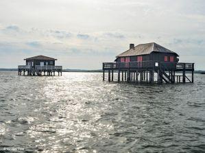 Bassin d'Arcachon : À l'orée de l'île aux Oiseaux, les cabanes tchanquées se dressent sur leurs pilotis. Elles constituaient autrefois des abris pour les ostréiculteurs surpris par la marée haute.