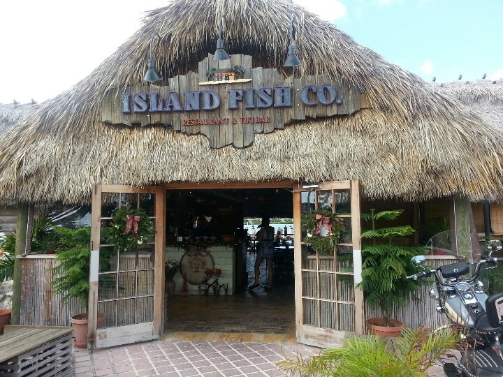 60 best images about florida keys or bust on pinterest for Best florida fish to eat