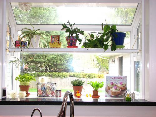 Kitchen Window Shelves For Herbs