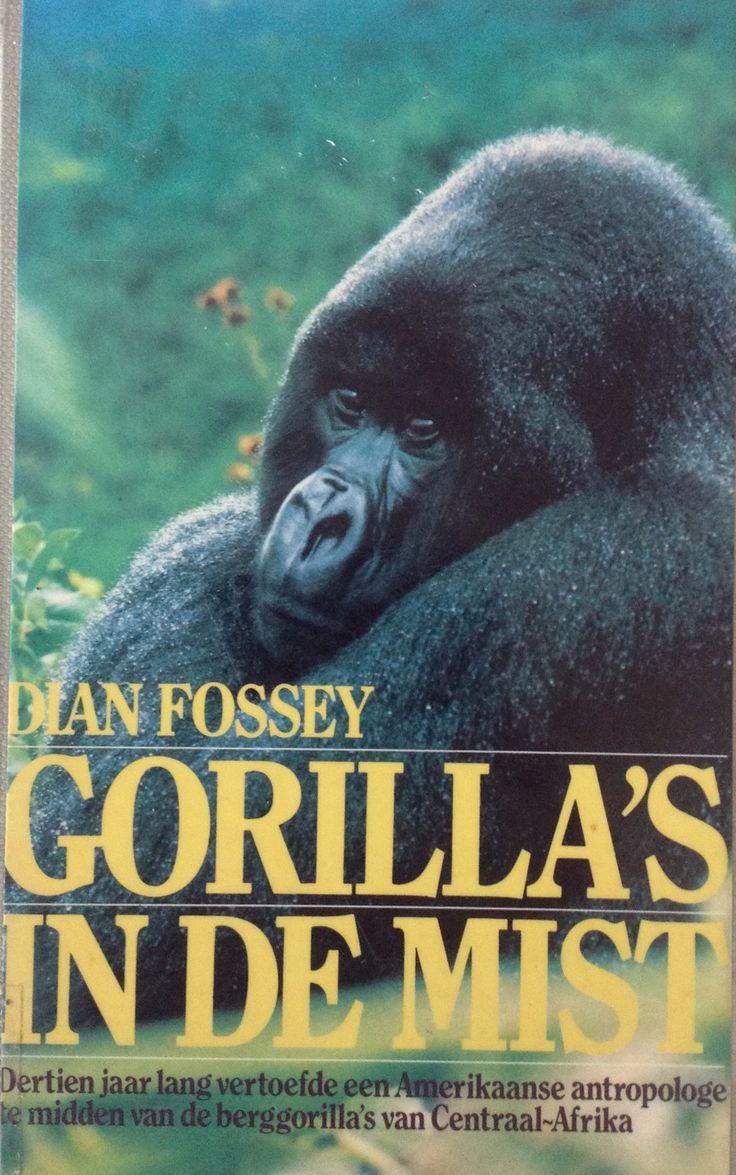 Gorilla's in the Mist