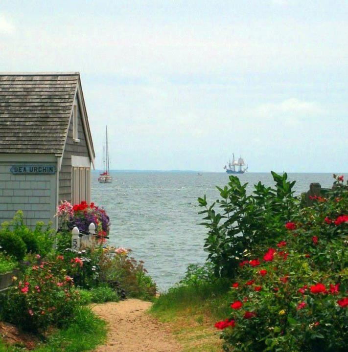 Provincetown Cape Cod cottage