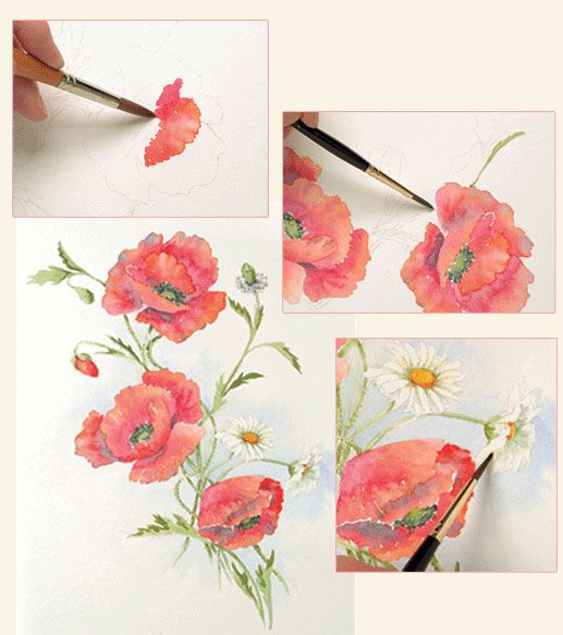 31 best images about drawing painting flowers how to for Watercolor tutorials step by step