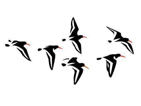 vogel grafisch - thejewelryshop