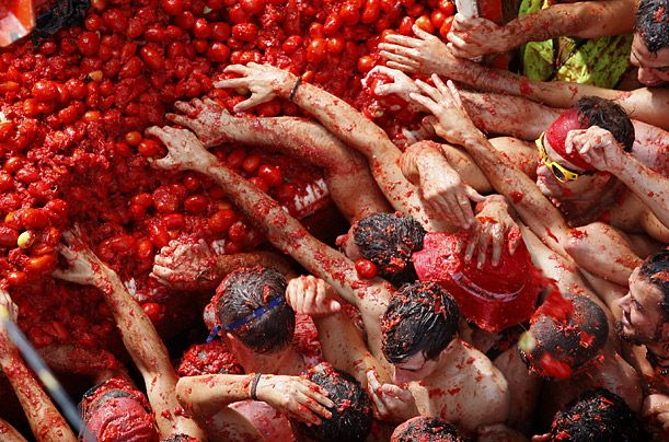 La Tomatina Food Fight, Spain: Tomatina Festivals, Buckets Lists, Red Colors, Tomatoes Fight, Travel, La Tomatina, Latomatina, Spain, Food Fight
