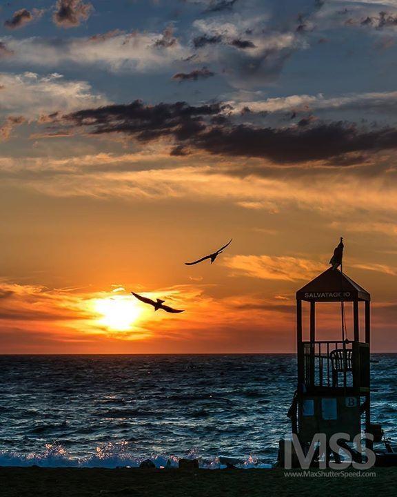 Isola del Giglio #sunset #isoladelgiglio #seascape #wonderful_places #amazingview #beautifuldestinations #beach #summer #salvataggio #ig_toscana #giglio #campese #mss #travel #beautiful #sunsetbeach http://ift.tt/2uwnzHM