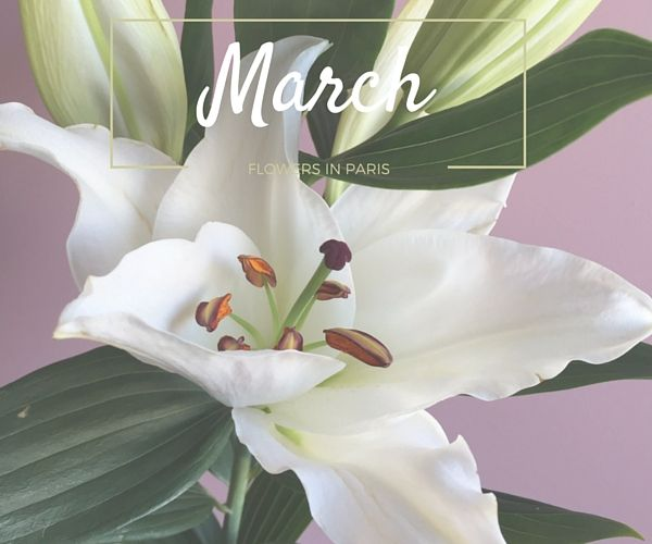 The lily is blooming in March - Wedding Bouquet in Paris