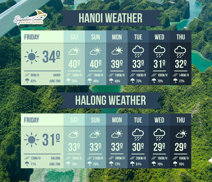 "📣[Signature Weather News]📣   💡The best option to avoid this ""🔥BBQ Weather"" is going to Halong  🗒Please take a note with our weather news from today Friday, 2nd of June to next Thursday, 8th of June and prepare the suitable clothes for your trip during these days  ☎Book the trip with us: https://signaturehalongcruise.com/en/contact-us  #signaturecruises #weathernews #hanoi #halongbay #halongcruise #luxurycruise #travel #weather #vietnam"