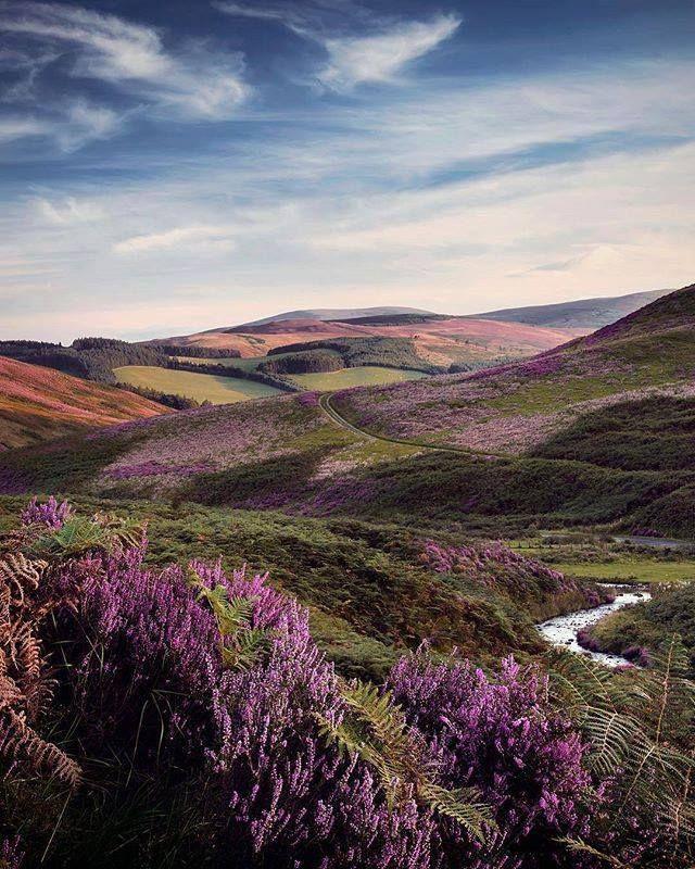 White Meldon, Scottish Borders