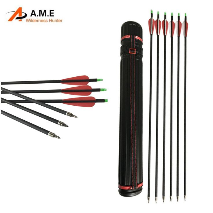 12pcs 31inch Spine 500 Carbon Arrows with Quiver Case Holder for Outdoor Archery Hunting Shooting 1 Dozen(China (Mainland))